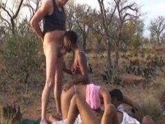 Los africanos cachondos se están devorando unos a otros en medio de la sabana. Grupo de personas se puso caliente en un viaje africano en medio de la sabana por lo que deciden hacer una orgía rápida con intensa acción oral para