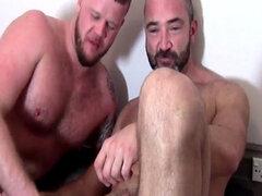Carga de brotes oso amateur