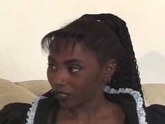 Linda sirvienta negra adolescente consigue su gatito limpiar