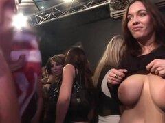 Pornstar caliente en sexo en grupo increíble, video xxx de rubia, esta fiesta hardcore ha convertido ahora en una orgía, como algunos de los strippers masculinos han pasado a una mezcla con los grupos de amigos cachondos que no pueden esperar para agarrar