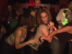 Exótica pornstar en asombroso sexo en grupo, escena porno striptease, un grupo de chicas de fiesta bastante amateur ponerse salvaje en la pista de baile en una discoteca, pulido uno contra el otro, bailando y bebiendo, en esta vida real softcore imágenes